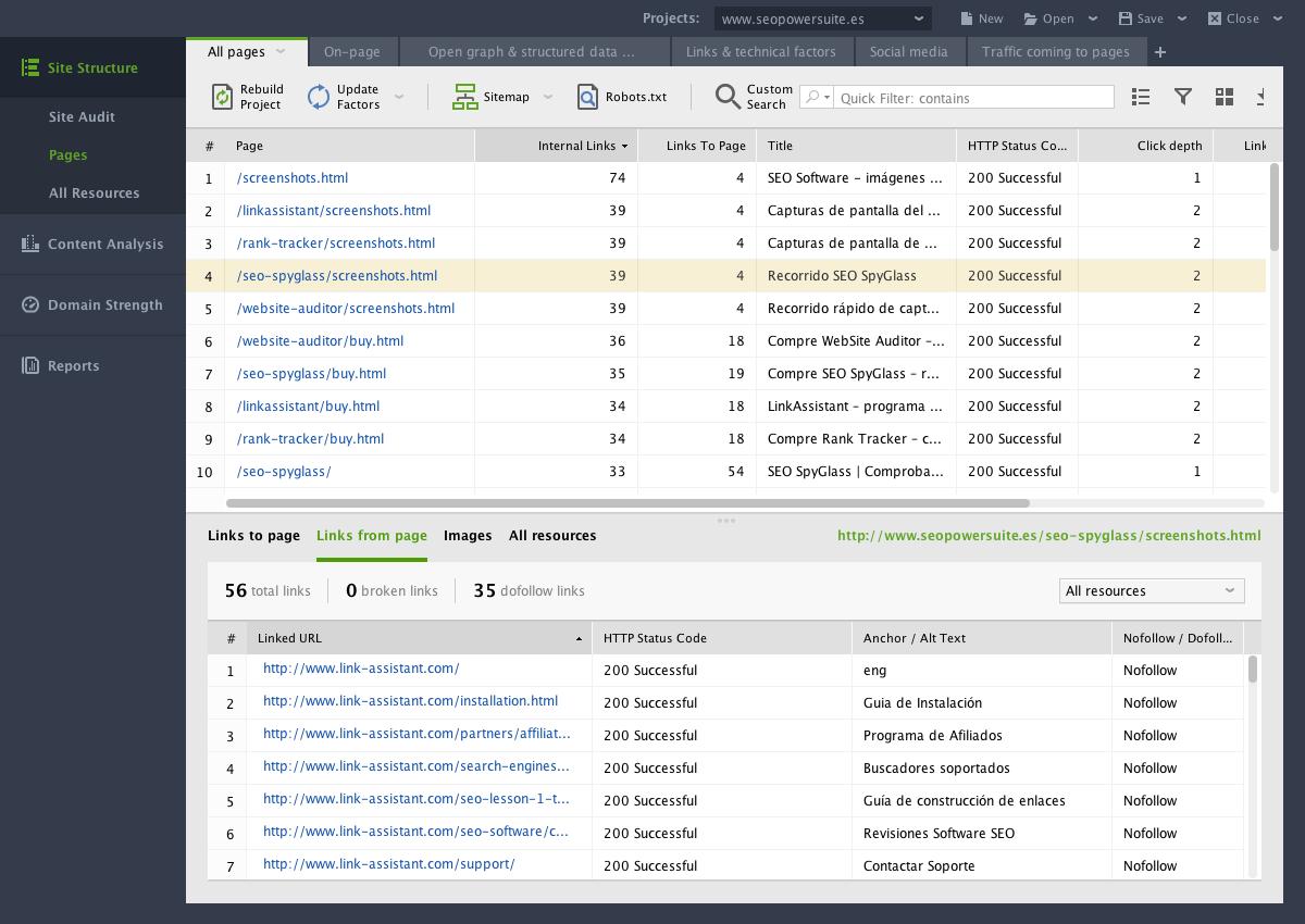 Программа Website Auditor